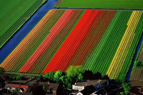 Aerial_photography_43