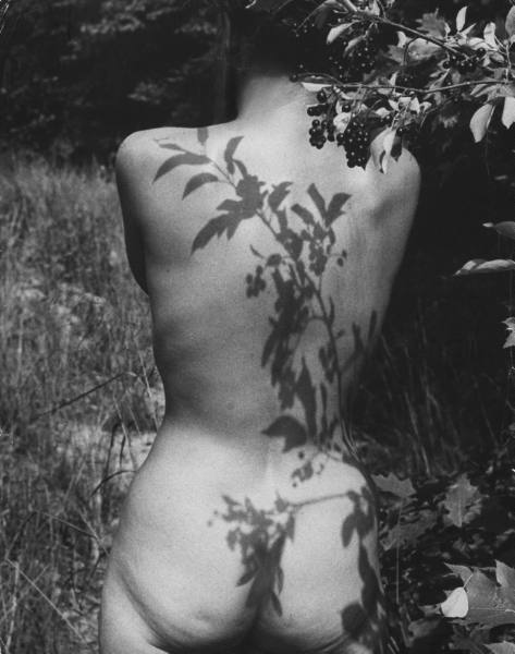 Wallace-kirkland-1954