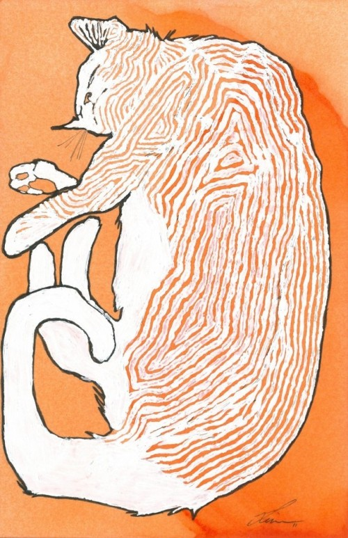 Orange-tabby-cropped-662x1024